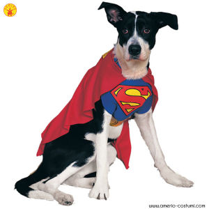 SUPERMAN - Pet Costume