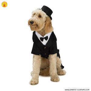 DAPPER DOG / SPOSO - Pet Costume