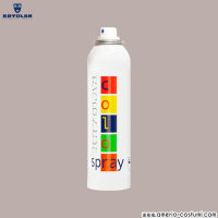 COLOR SPRAY - 150 ml - D19 GRIGIO