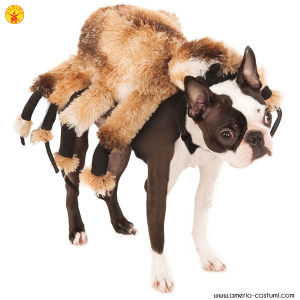 RAGNO GIGANTE - Pet Costume