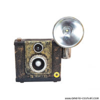 HAUNTED CAMERA LIGHT & SOUND - 24 cm