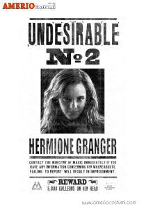 Mini poster - Hermione