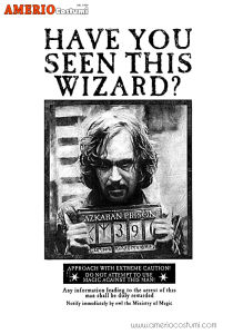 Mini poster - Sirius